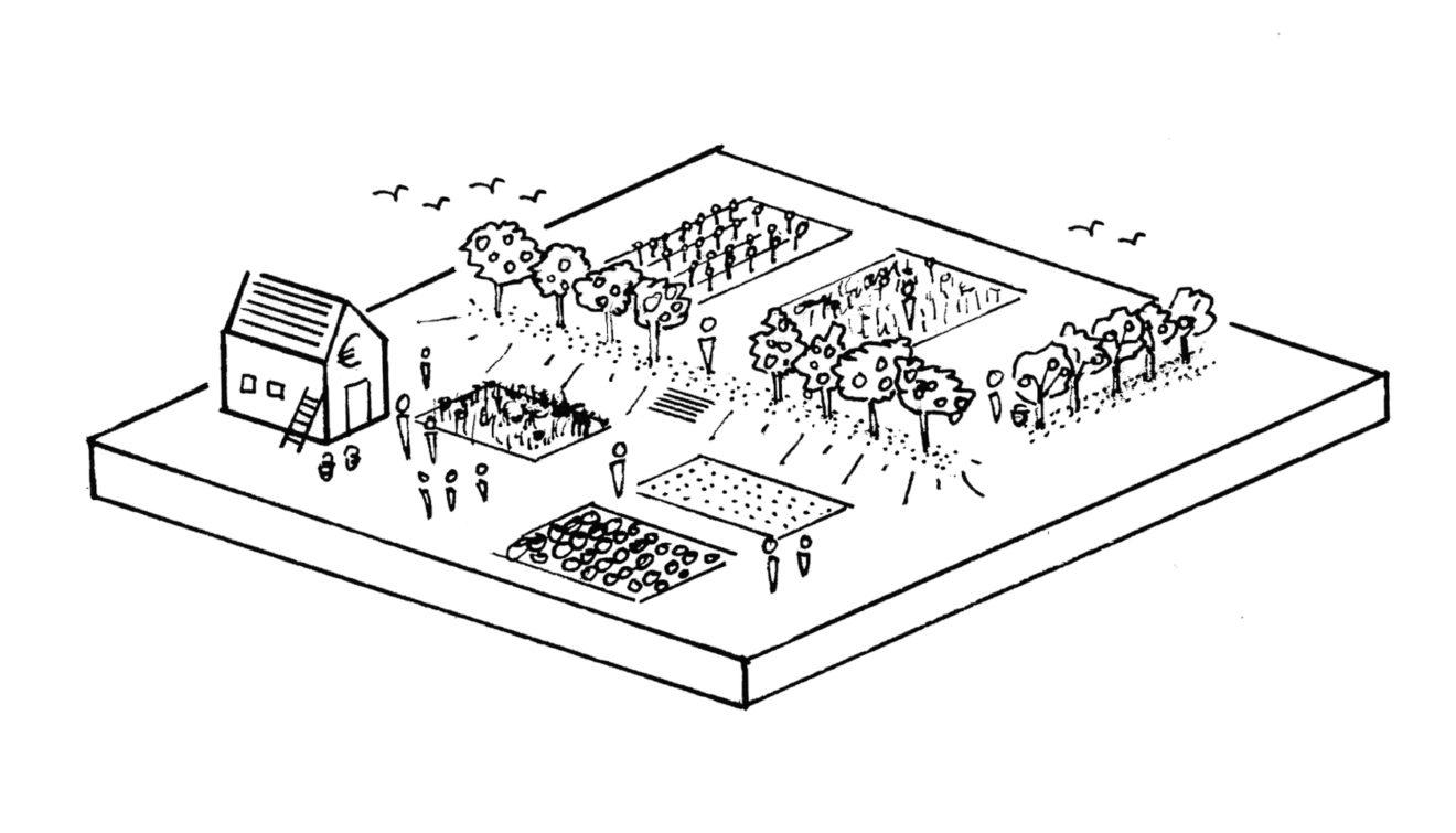 Idee van een pluktuin langs het Duits Lijntje