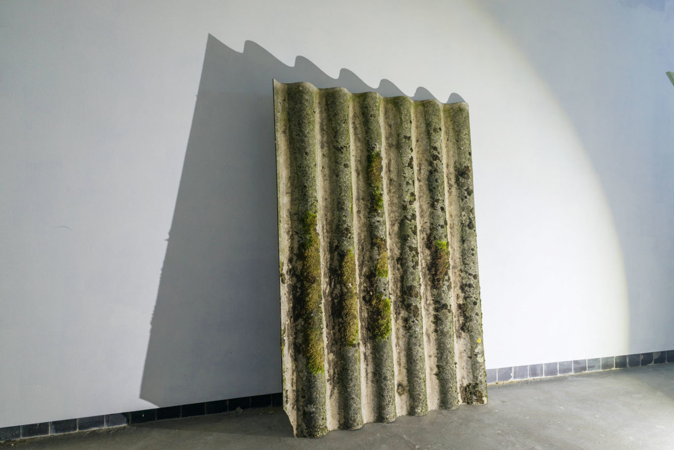 installatie tentoonstelling life under a cherry tree van rotor