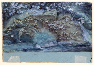 Study of Moss, Fern and Wood-Sorrel, upon a Rocky River Bank / John Ruskin, 1875-79